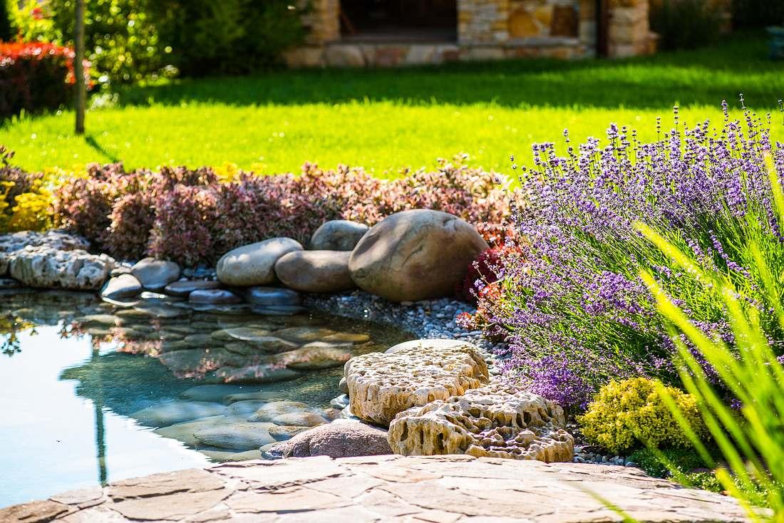 Ein Gartenteich in einem Teichbecken