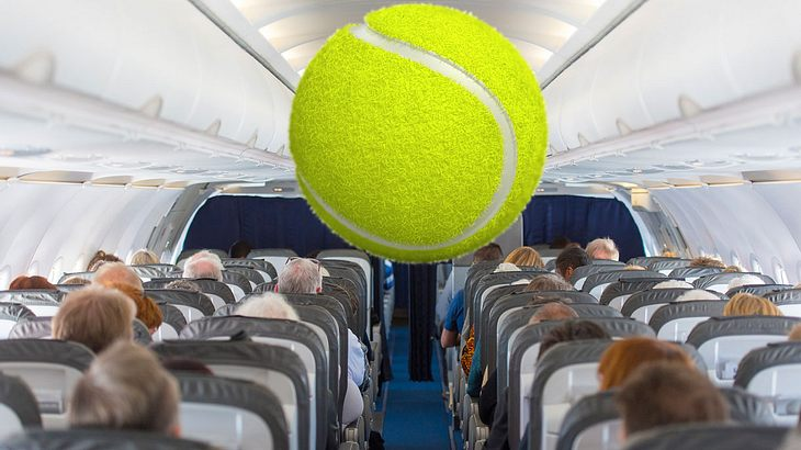 Besser immer einen Tennisball mit an Bord nehmen