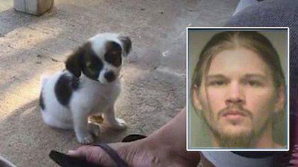 Kein WIFI-Passwort: Da zündet Christopher V. durch und bricht einem Hundewelpen das Genick - Foto: KCCI NEWS 8 / Polk County