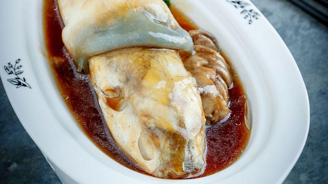 Tödliche Speisen (hier: Kugelfisch)