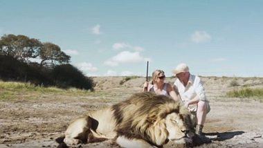 Jäger posieren mit totem Löwen