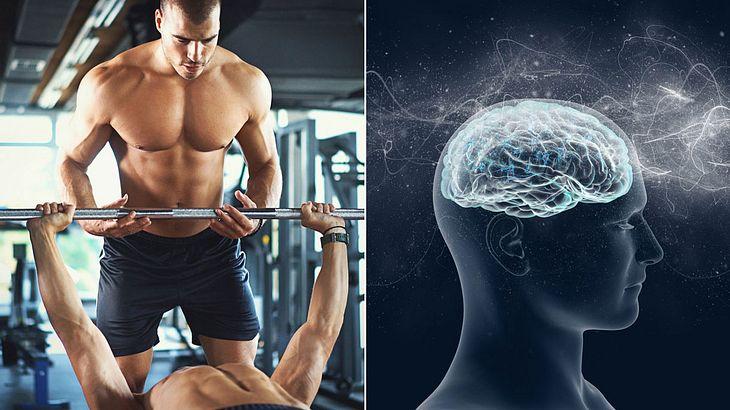 Studie: Exzessives Workout schwächt deine Gehirnleistung