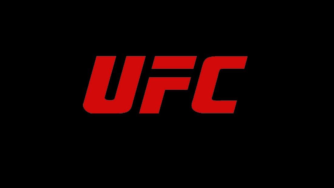 UFC: Die Geschichte der Ultimate Fighting Championship