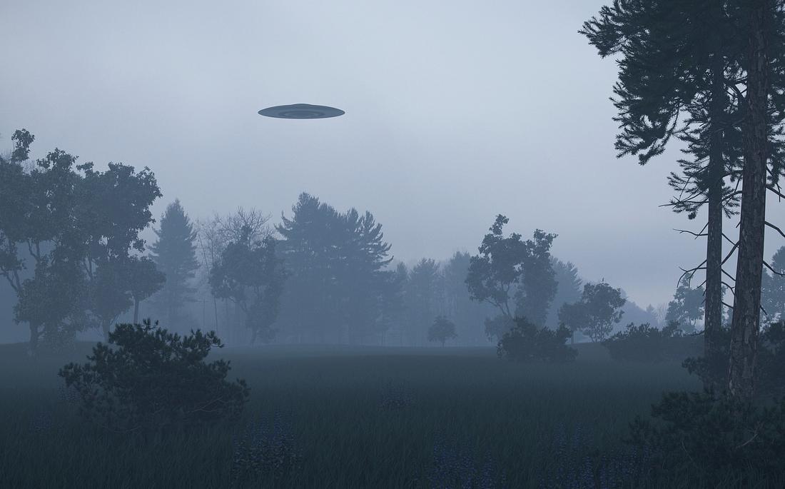 Ufo über einem nebligen Waldgebiet