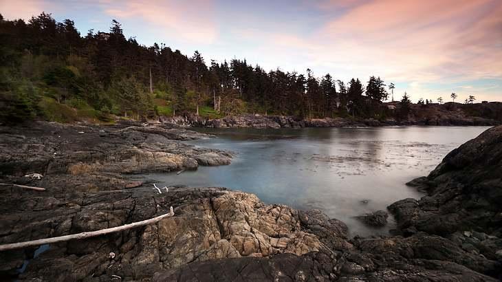 Warum an diesem kanadischen Strand immer wieder abgetrennte Füße in Laufschuhen angespült werden