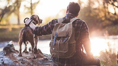 Wandern mit Hund - Foto: iStock / Kosamtu
