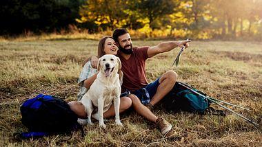 Entspannter Ausflug mit Hund - Foto: iStock / Pavle Bugarski