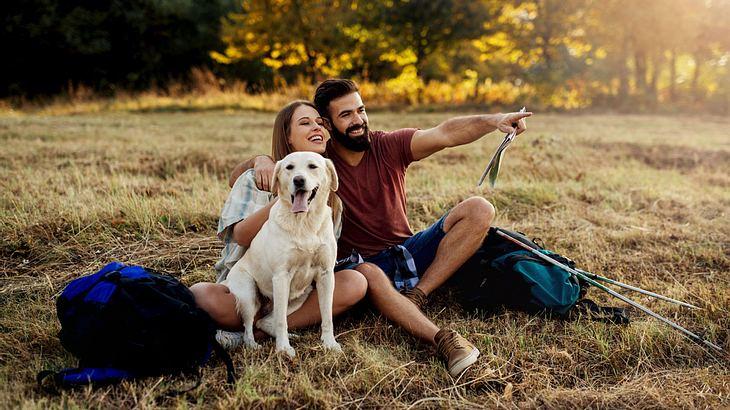 Entspannter Ausflug mit Hund