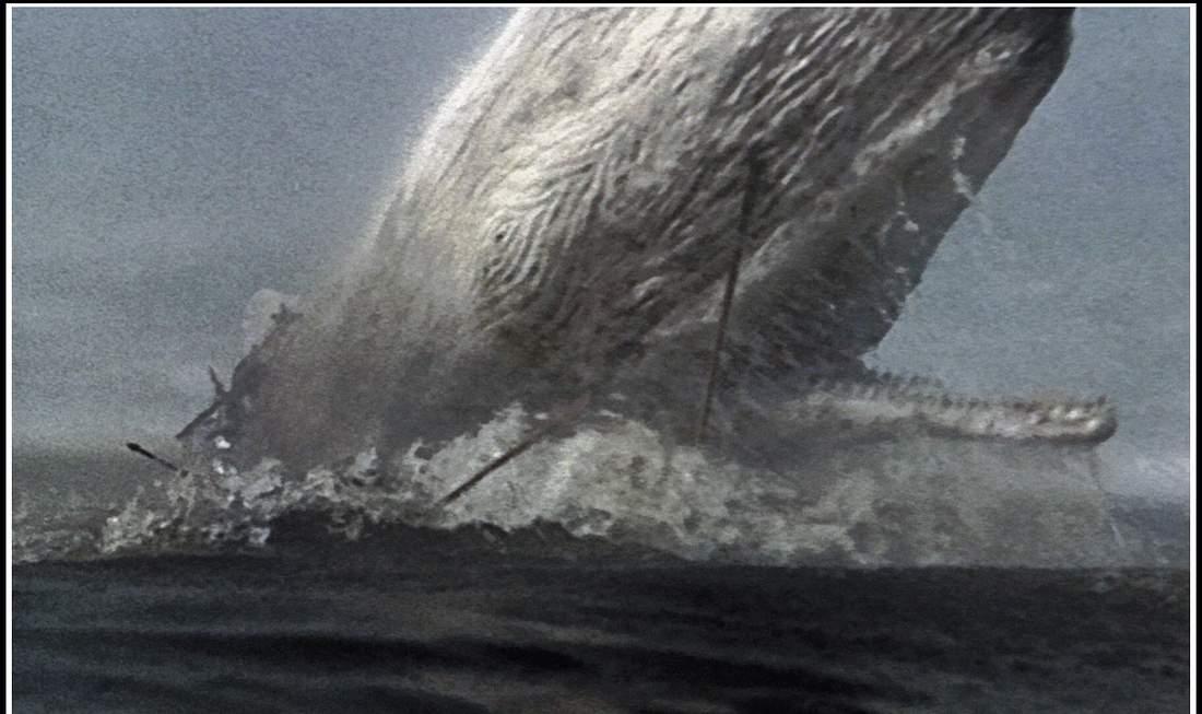 Szene aus Moby Dick (1956)