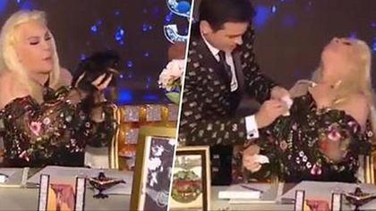Ein Welpe kackt einer TV-Moderatorin auf den Busen - Foto: YouTube
