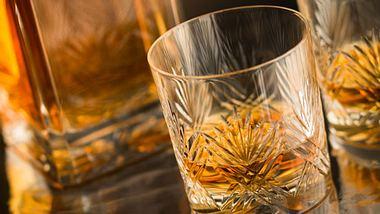 Die besten Whiskygläser im Vergleich