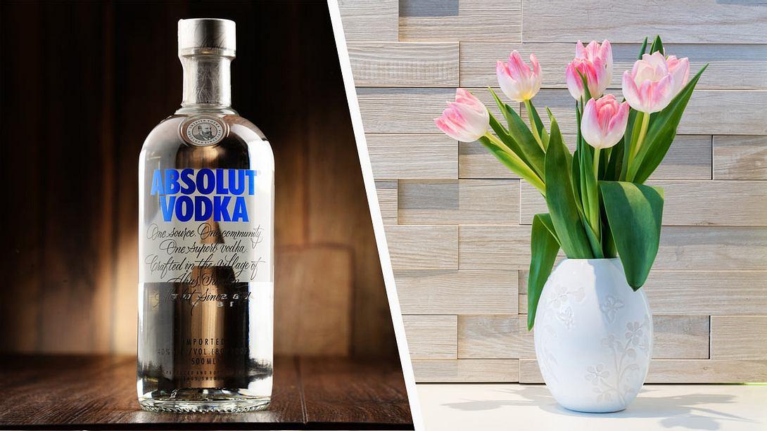 Er schüttet Wodka in eine Vase – der Effekt ist genial
