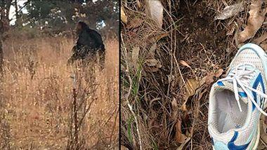 Frau meldet Bigfoot-Angriff - Er war über zwei Meter groß