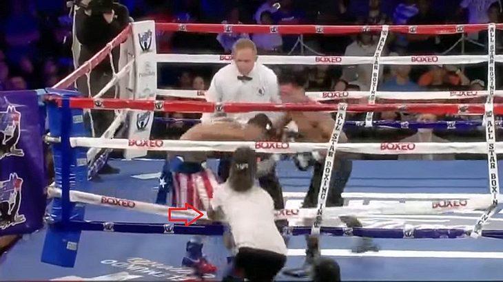 Ein Zuschauer greift einen Boxer per Faustschlag an